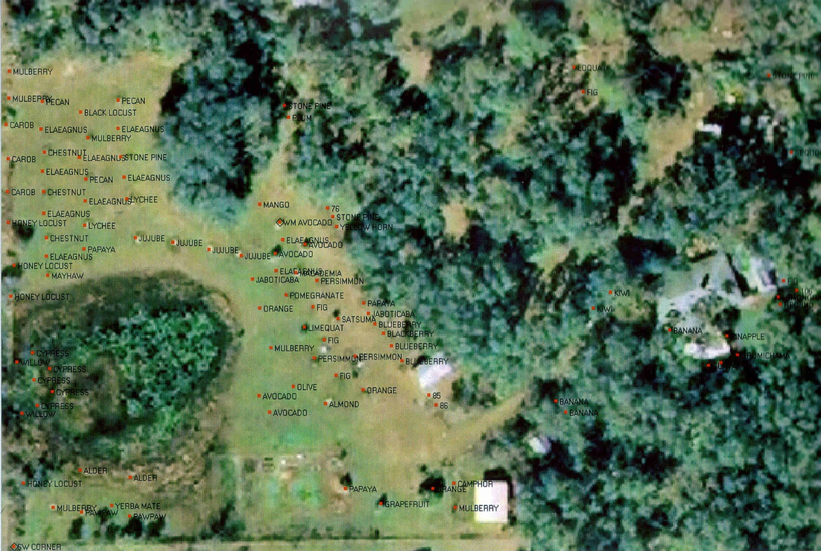 Plan With Elevation : Forest garden establishment project in central florida